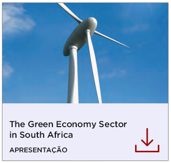 The Green Economy Sector in South Africa